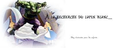 https://alarecherchedulapinblanc.blogspot.com/