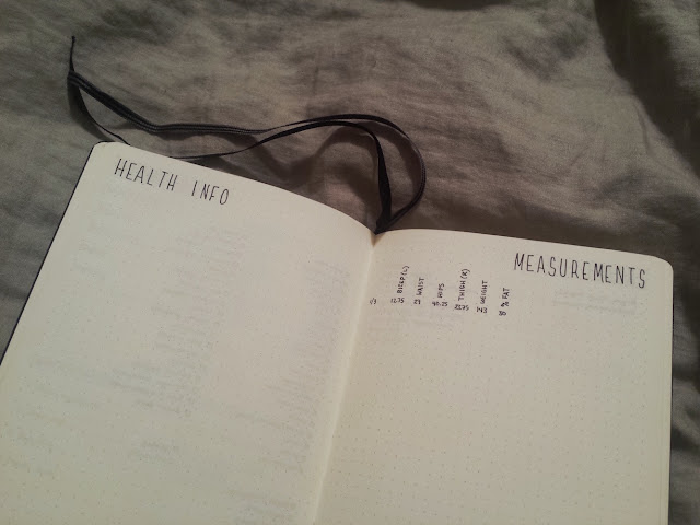 2017 Bullet Journal Health Info and Measurements