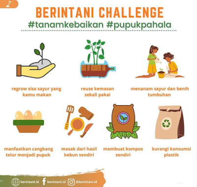 7 challenge beritani.id, beritani.id