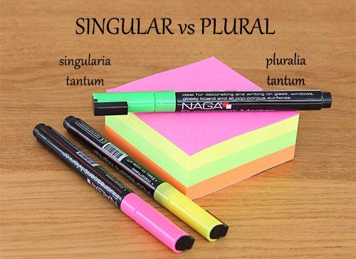 SINGULAR vs PLURAL
