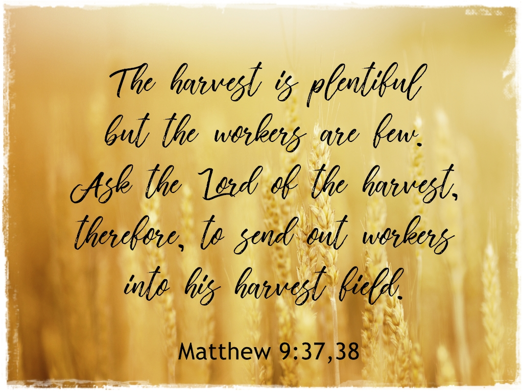 His Word in Pictures: Matthew 9:37,38