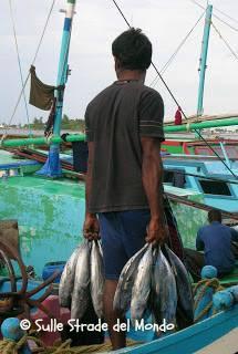 Male Mercato del pesce