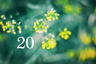 dzień urodzenia 20, znaczenie, numerologia, horoskop, 20