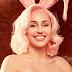 """Miley Cyrus faz """"apagão"""" no Instagram e fãs aguardam nova personalidade"""