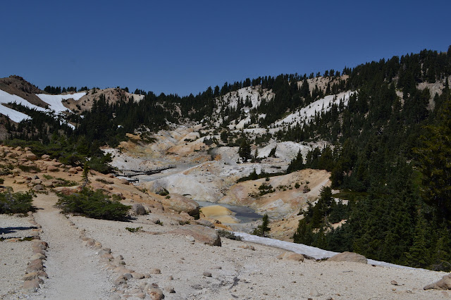 Bumpass Hell surrounded by green forest