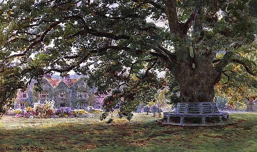 1904 estate garden tree, color painting