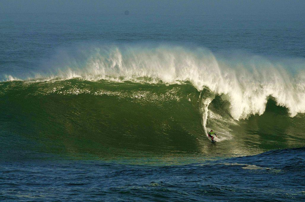 vaca gigante surf