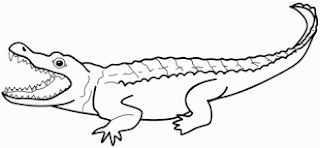 Big Alligator Coloring Sheet For Kids