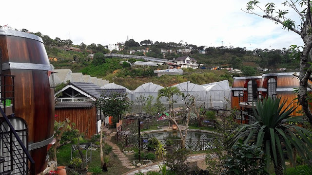 Wine Valley Homestay in Da Lat 1