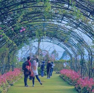 Taman Mawar Situhapa