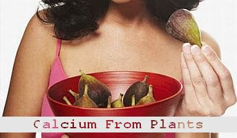 https://foreverhealthy.blogspot.com/2012/04/case-for-getting-calcium-from-plant.html#more