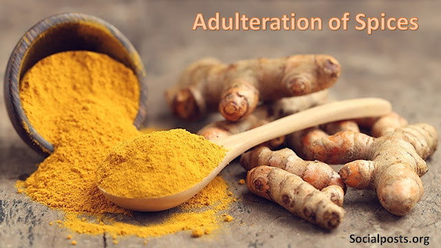 Real Life Food Adulteration Examples