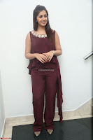 Nikki Galrani in a Brown Shining Sleeveless Gown at Nakshatram music launch ~  Exclusive 073.JPG