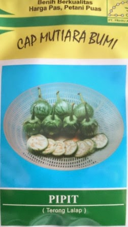 tahan layu, daging keras, buah panjang, terong lalap, pipit, tahan virus, hasil tinggi, terong, benih, bibit