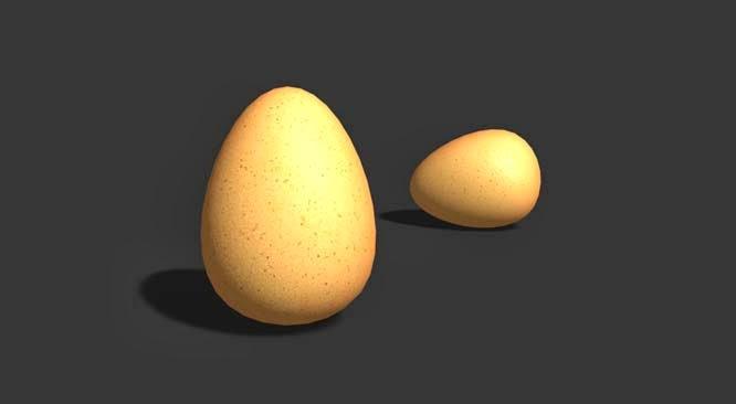 Egg Modeling Tutorial