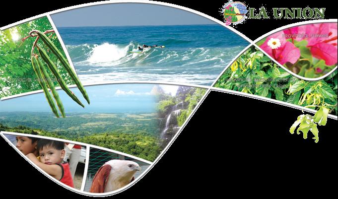 Garden Coast Of La Union Beach Resorts The Quest Boi