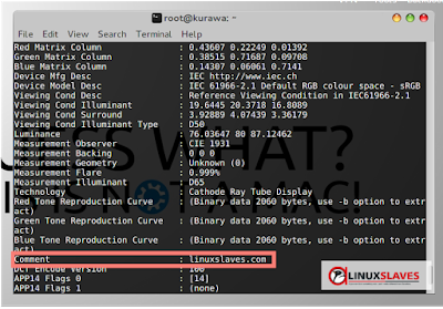 Manipulate Exif Metadata Image in Linux