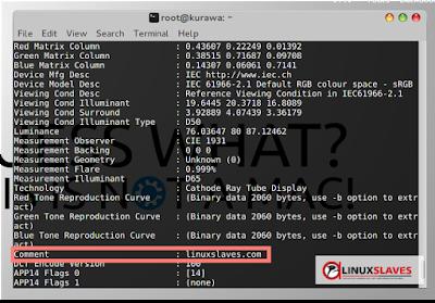 Manipulate Exif Metadata Image in Linux
