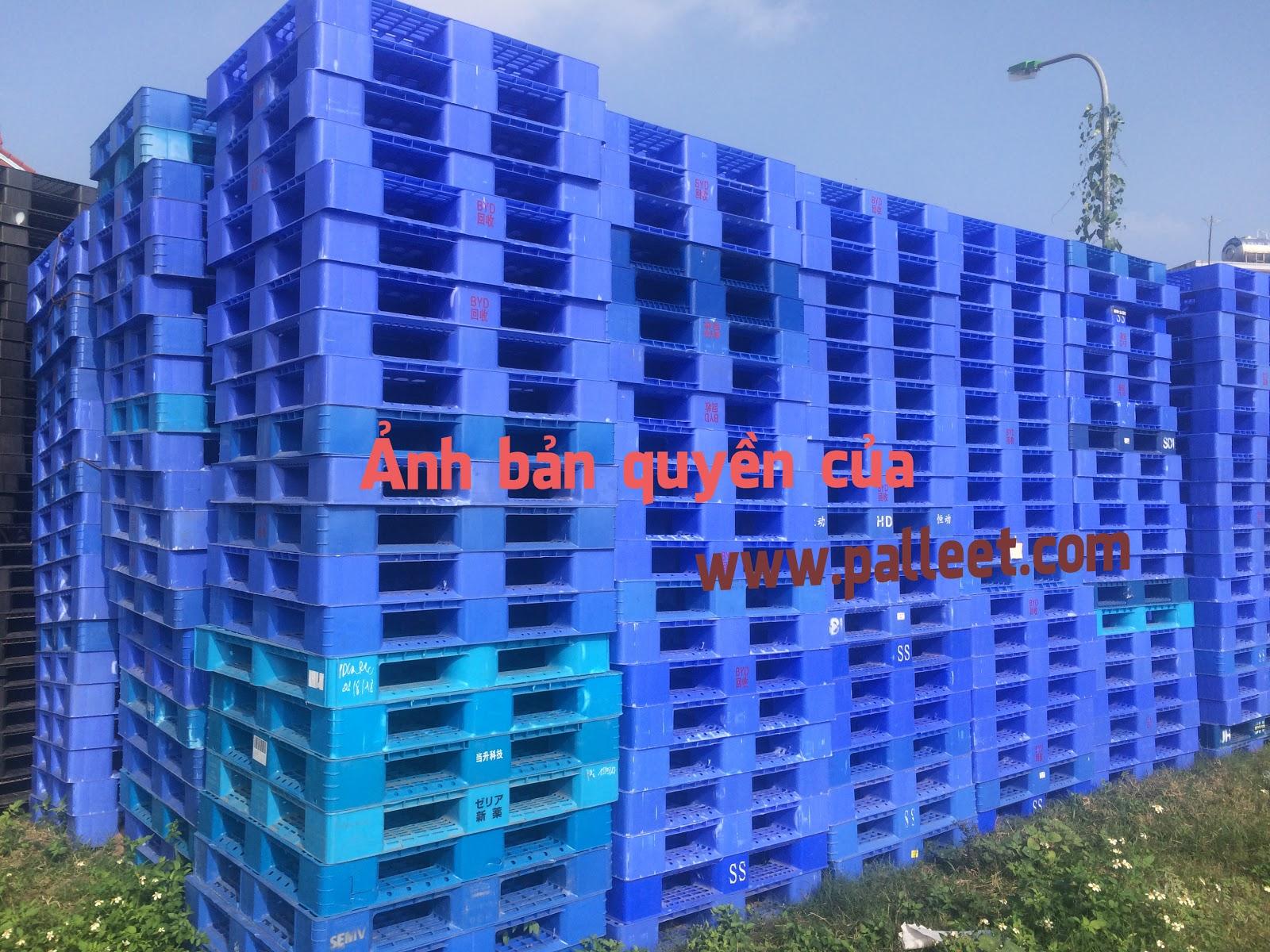 kinh doanh và sản xuất pallet nhựa tại Gia Lâm, Hà Nội