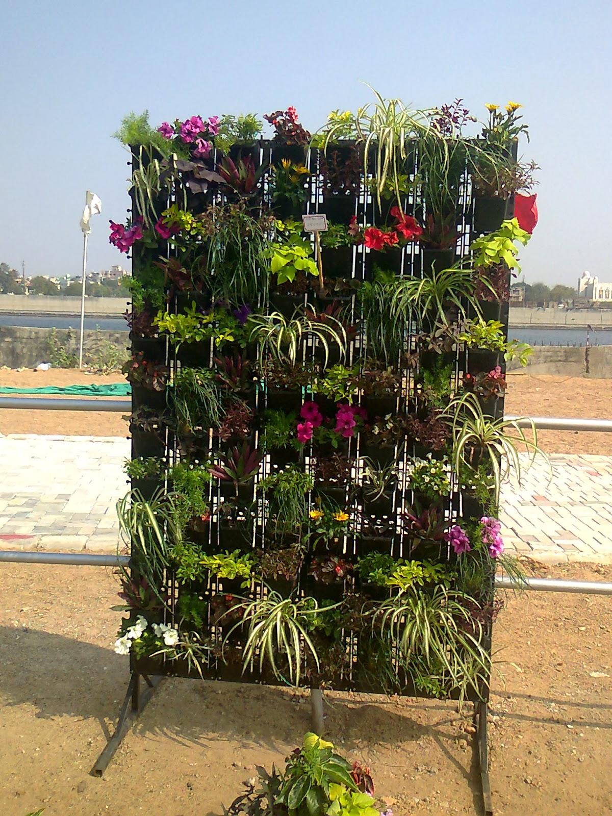 Vertical garden flower show ahmedabad 2014