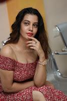 Diksha Panth in a Deep neck Short dress at Maya Mall pre release function ~ Celebrities Exclusive Galleries 139.JPG