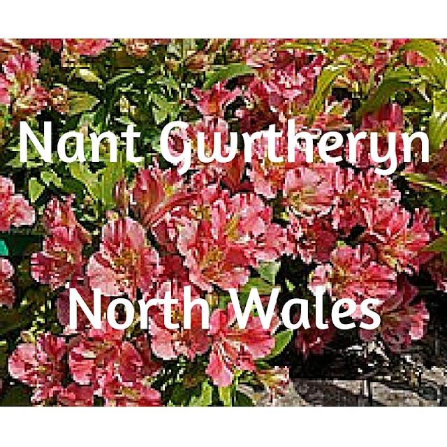 Nant Gwrtheyrn, North Wales