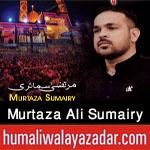 http://www.humaliwalayazadar.com/2017/09/murtaza-ali-sumairy-nohay-2018.html