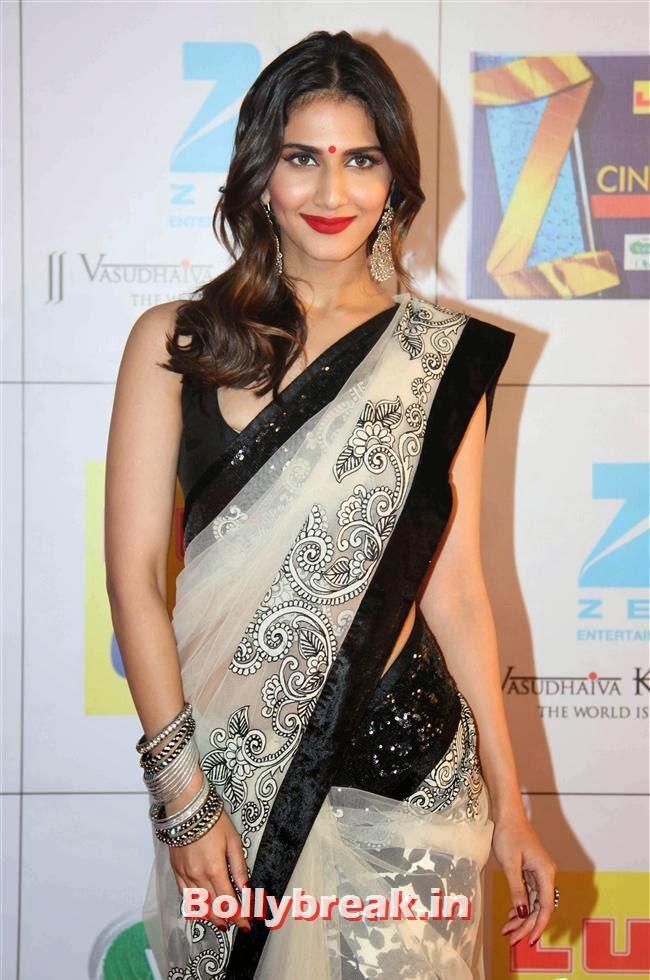 Vaani Kapoor, Zee Cine Awards 2014 Red Carpet Pics
