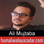 https://www.humaliwalyazadar.com/2018/09/ali-mujtaba-nohay-2019.html