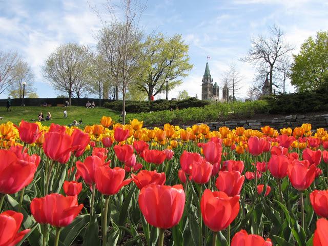 Major's Hill Park em Ottawa