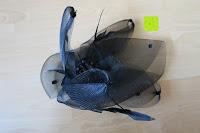 ausgepackt: Valdler Damen Fascinator Hut Mini-Hut Blumen Tüll Netz Fasching Haarschmuck