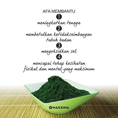 Kandungan AFA (Aphanizomenon flos-aqua), Manfaat AFA (Aphanizomenon flos-aqua), Manfaat CellMaxx, Kandungan CellMaxx, Bahan CellMaxx, AFA, Aphanizomenon flos-aqua