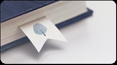 Scholarship System and Foundation Backups