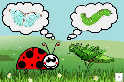 Leppäkerttu ja heinäsirkka ajattelevat