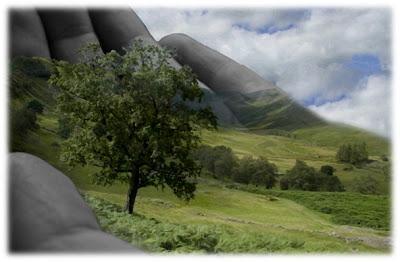 Conservação e Preservação do Meio Ambiente