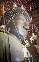大仏さま お身ぬぐい 東大寺