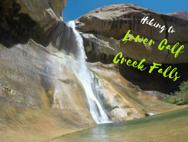 The Best Dog Friendly Waterfalls Hikes in Utah, Lower Calf Creek Falls Escalante