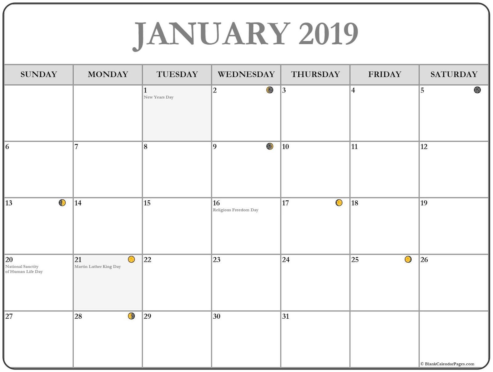 January 2019 Free Editable Calendar