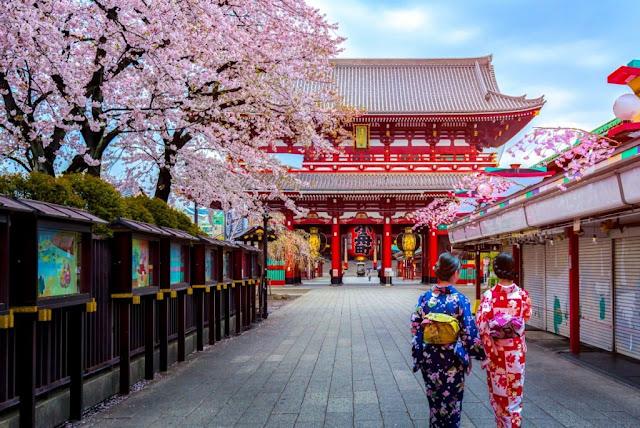 Du lịch Nhật Bản mùa lễ hội tháng 3 ngắm hoa anh đào