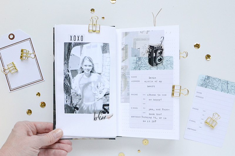 Aly dosdall mini album with typecast fuse heidi swapp in this album each of the pages is a pocket that you slide your photo or patterned paper journaling card or shaker pocket into so it was easy to slide solutioingenieria Image collections