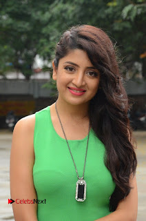 Poonam Kaur in a tight small sleevless green dress spicy pics at Prayanam Movie Opening
