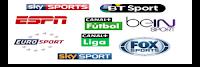 Live Stream sport Sky NPO Rai BeIN iptv