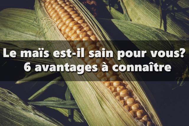 6 avantages à connaître sur maïs