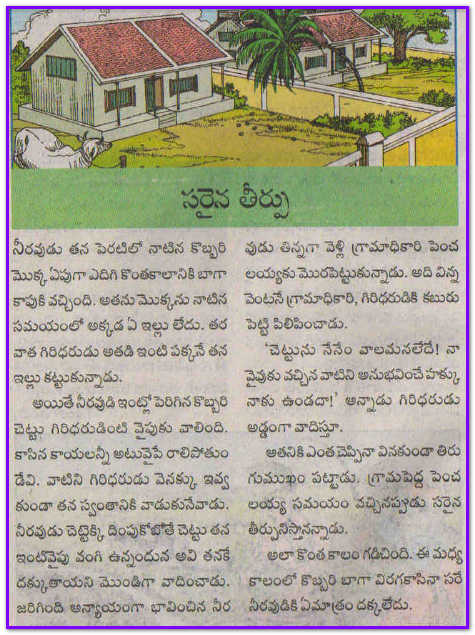Telugu story books for adults