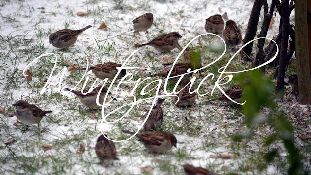 Winterglück