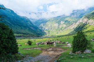 Imposer à la Suisse les normes européennes