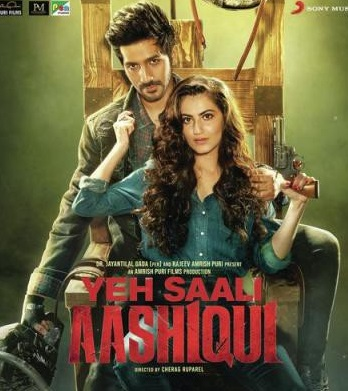 Yeh Saali Aashiqui 2019 Hindi Movie 350MB HDRip 480p ESubs