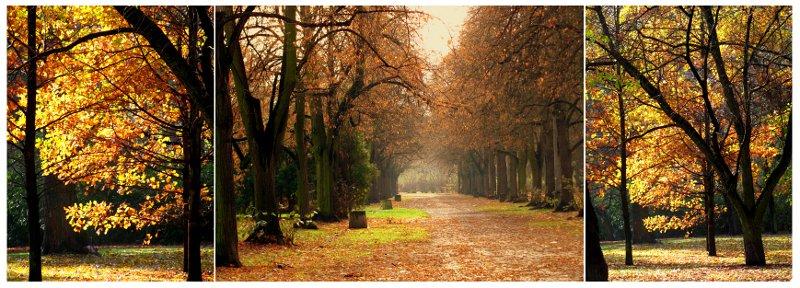 #003 Tryptyk jesienny