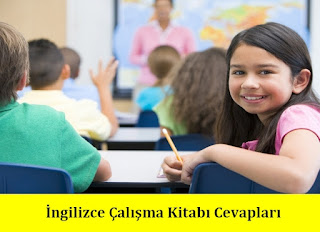 4. Sınıf İngilizce Pantera Yayınları Çalışma Kitabı Cevapları Sayfa 50