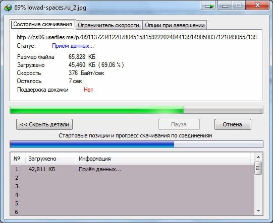 Процесс скачивания в Internet Download Manager.